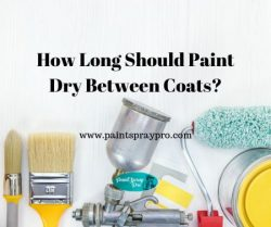 How long should paint dry between coats