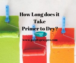 how long does it take primer to dry
