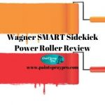 Wagner Smart Sidekick Power Roller Review